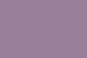 71-21 lila